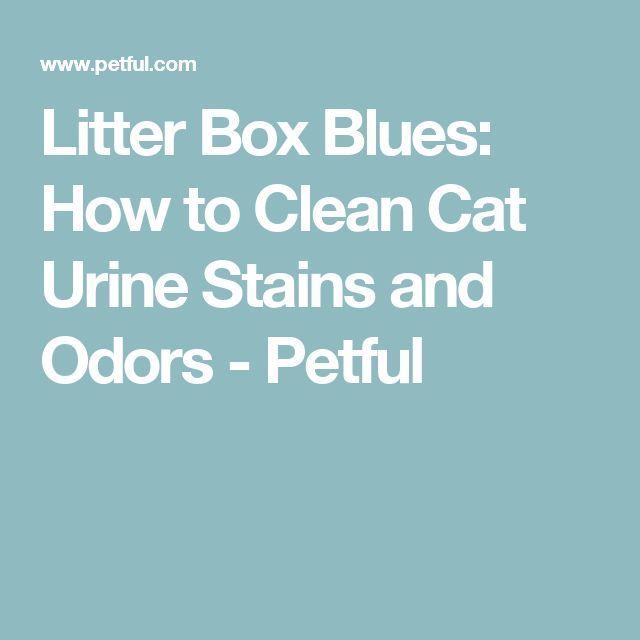 Best 25 Litter Box Smell Ideas On Pinterest Litter Box