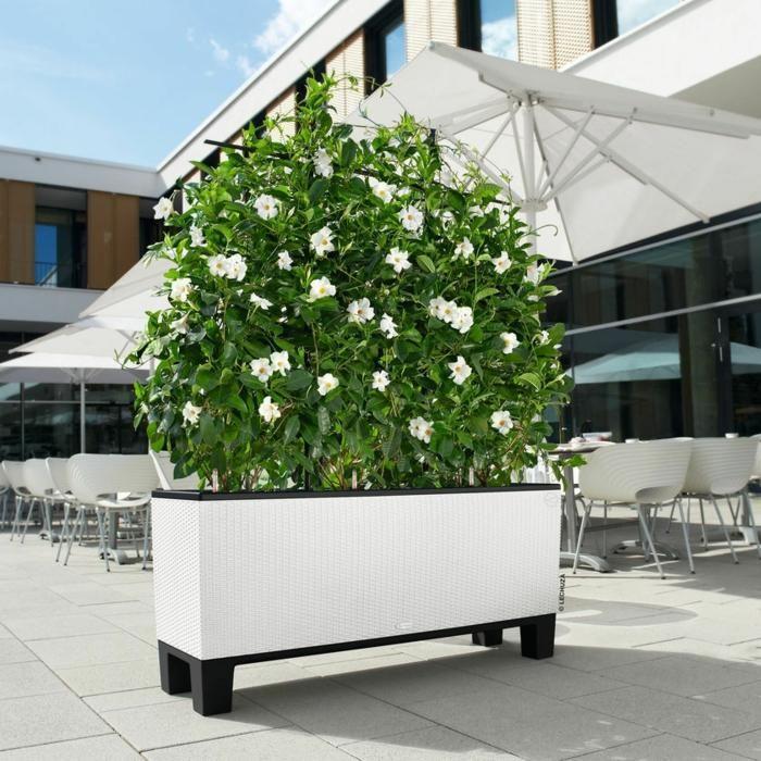 Pflanzer Ideen, um sie in Terrassen und Balkonen zu nutzen