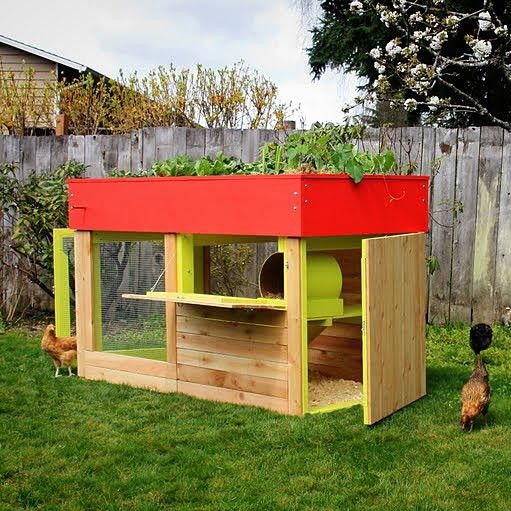 chicken coopsGreen Roofs, Gardens Beds, Ideas, Chicken Coops, Gardens Roof, Urban Gardens, Urban Chicken, Chicken House, Planters Boxes