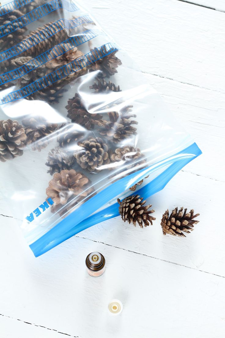 best 25 scented pinecones ideas on pinterest fall smells diy