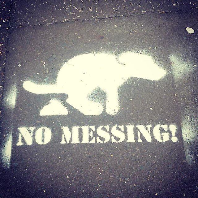 Banksey or dog poop vigilante in Wroxham? #wroxham #norfolkbroads #norfolk #banksey