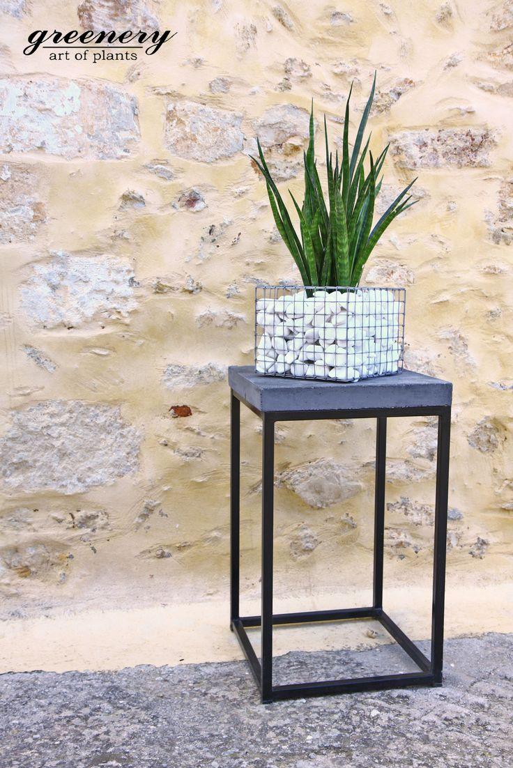 Beautiful gabion pot with Sansevieria! #greenery #greeneryoriginals #plants #gabion #greece