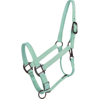 Mint Green Horse Halter by Lucky Pony - they have lots of unique and cool equestrian items
