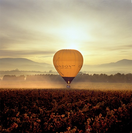 Early morning glide over the Chandon winery in Yarra Valley, Australia  via http://www.domainechandon.com.au/