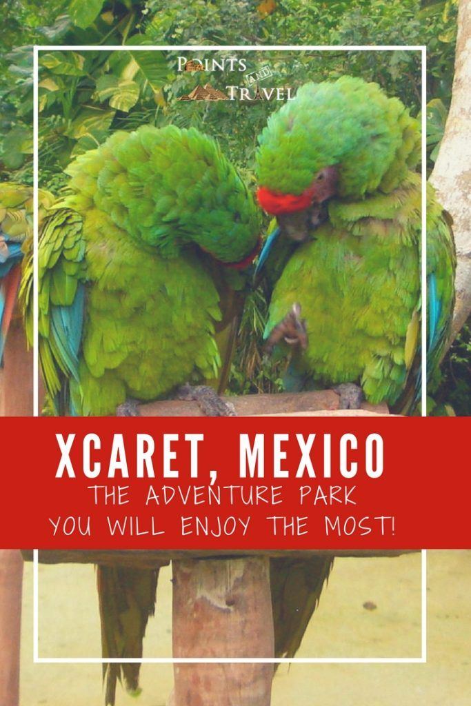 Xcaret, Mexico:  One amazing eco-friendly adventure park in the Riviera Maya.