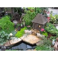fairy gardens ideas gift ideas for mothers day mothers day flowers 3072x2304