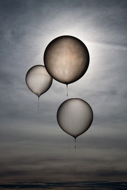 """ Waiting Balloons, by lacomj. Three weather balloons readied for release. """