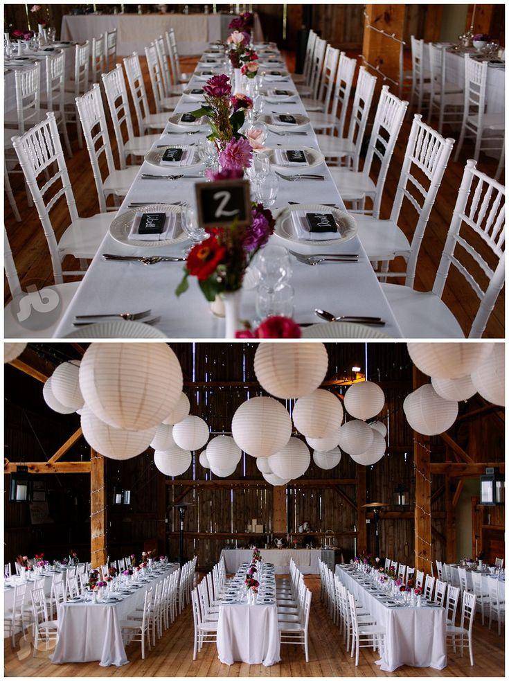 wedding reception minnetonkmn%0A Caitlin and Tony  Picton Wedding Photographer