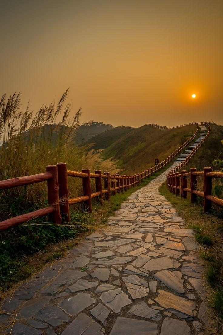 Landscape Photography Tips: primrosegarden