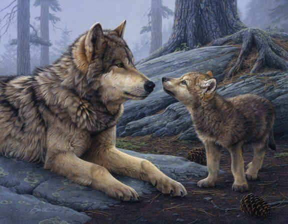 North American Wildlife Artists Artists Smith Daniel