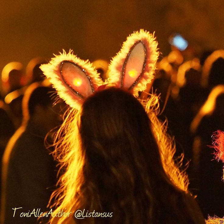 I don't usually take photos of random strangers but last night the rim light from the huge bonfire on this little girl's bunny ears was just amazing. The centre of the ears were flashing with different coloured lights and with her head slightly tilted the effect was wondrous. Enraptured by the fire she was definitely Alice in Wonderland  #jaketalbotinvestigates #JTI #amwriting #writersofinstagram #writerslife #writer #surreylife #bonfirenight #silhouette #portrait #magical #festivity…