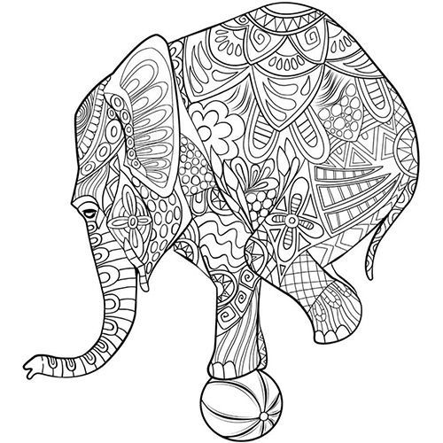 Sketch Design Colouring Pages Mammals Wild Animals Animal Kingdom Zentangle Doodle Elephant Dinosaurs