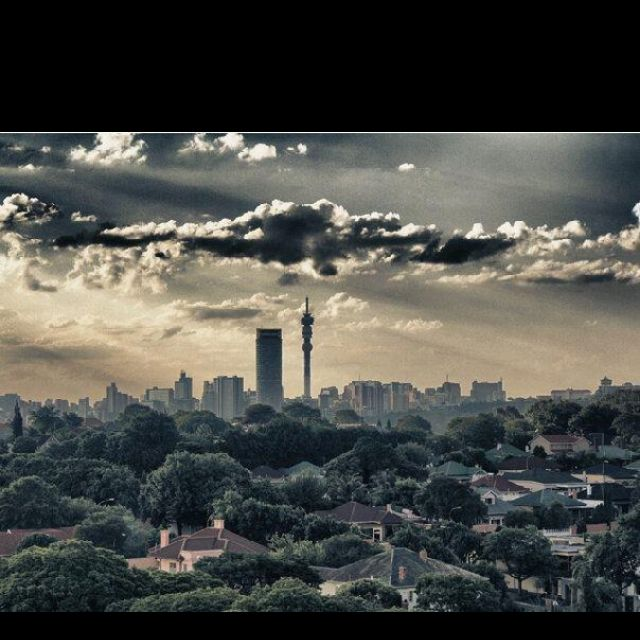 the Johannesburg skyline and all our beautiful trees!
