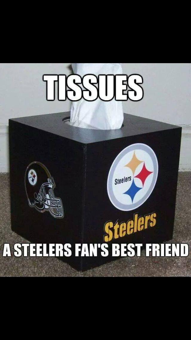 Funny Steelers Meme : Best steelers suck images on pinterest cincinnati