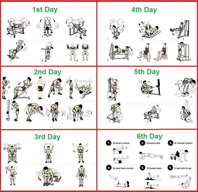 1080 best Gym workout chart images on Pinterest | Gym workouts ...