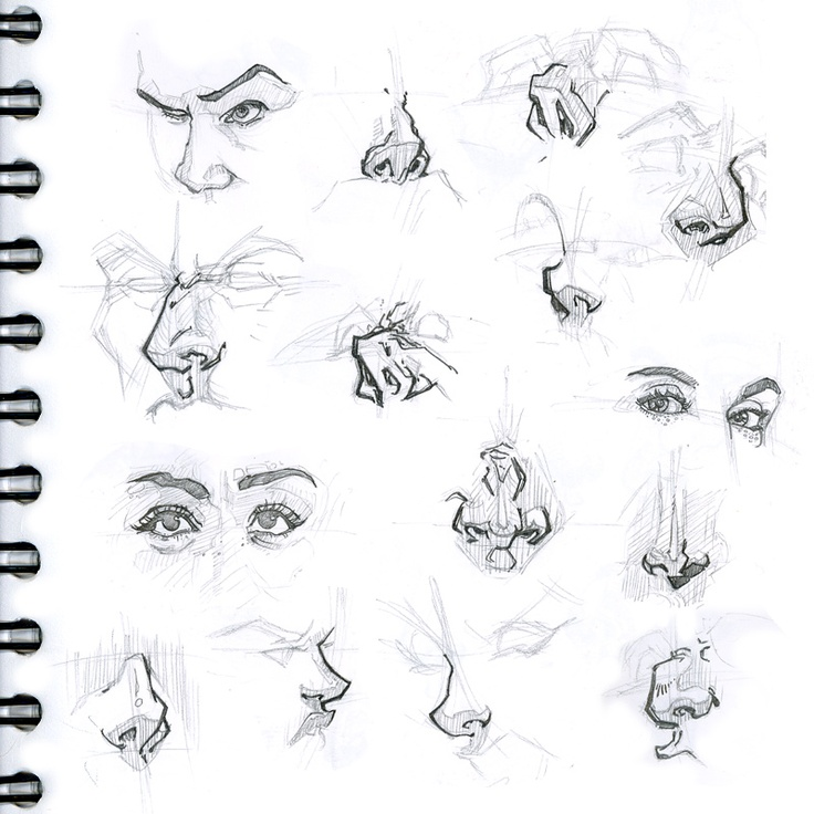 The 18th interpreting drawings facial features stroking compilation
