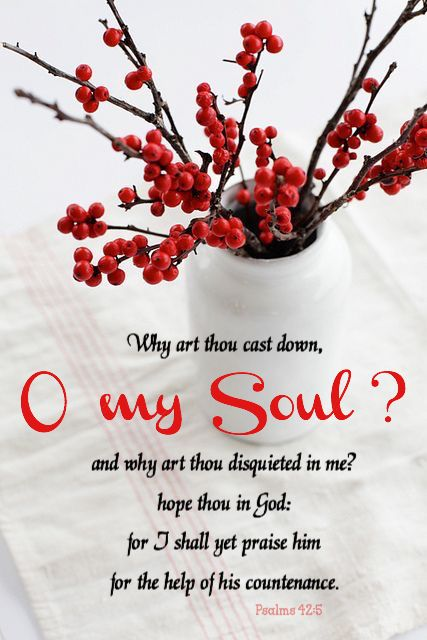 """Why are you cast down, O my soul? And why are you disquieted within me? Hope in God, for I shall yet praise Him For the help of His countenance."" ‭‭Psalms‬ ‭42:5‬ ‭NKJV‬‬"