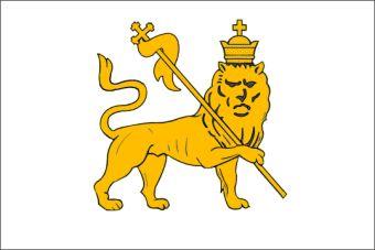 Risultati immagini per leone di giuda
