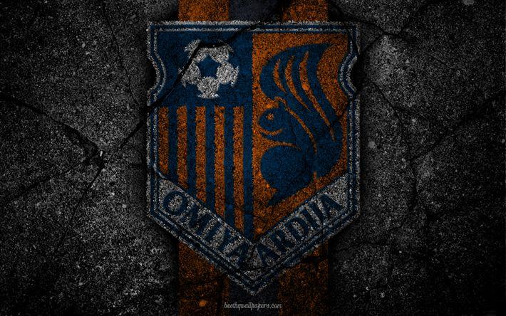 Download wallpapers Omiya Ardija, logo, art, J-League, soccer, football club, FC Omiya Ardija, asphalt texture