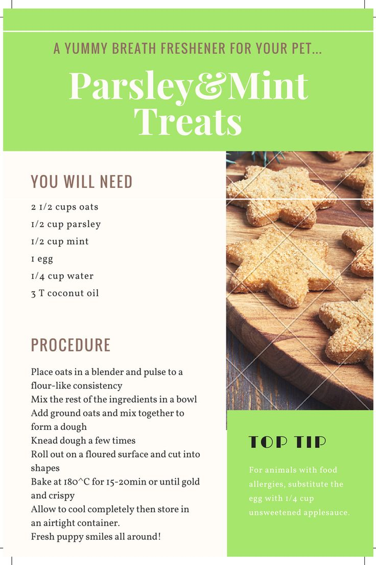 """CHRISTMAS SNACKS FOR DOGS Can you believe it's halfway through December already? Seriously though, where did this year go? The festive season is upon us and with it comes Christmas parties, family gatherings and just general feasting and merry-making. With all our celebrations going on a lot of people try to spread the festive cheer…  Continue reading """"DOGGY CHRISTMAS TREATS"""""""
