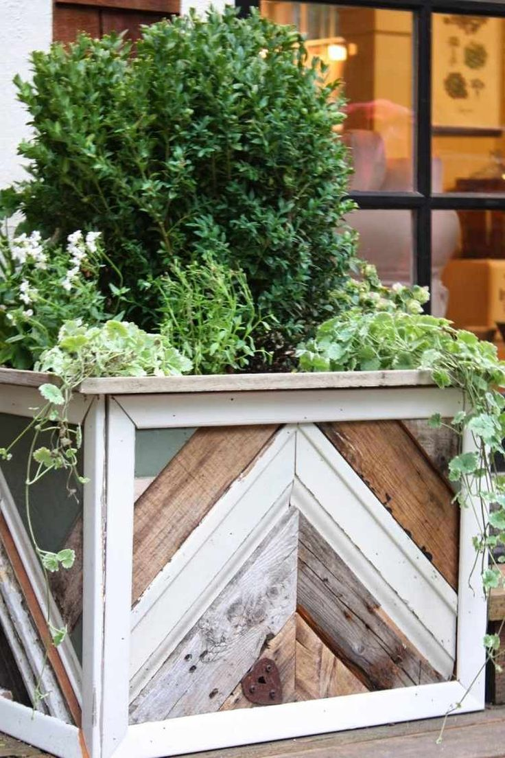 Les 25 meilleures id es concernant plantes retombantes sur for Plantes vertes retombantes