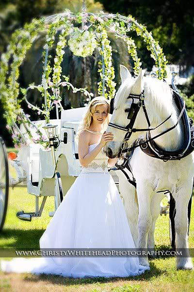 Awesome shoot from the Glen Venue in Glen St. Mary, FL with our Cinderella carriage.  Dream Horse Carriage Company