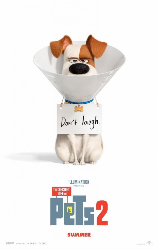 The Secret Life Of Pets 2 Celebrates National Pet Day With Official Trailer Alien Bee Entertainment N Secret Life Of Pets Secret Life Full Movies Online Free