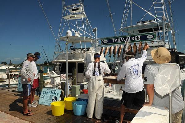 Best 99 fishing ideas on pinterest florida keys the for Hawks cay fishing