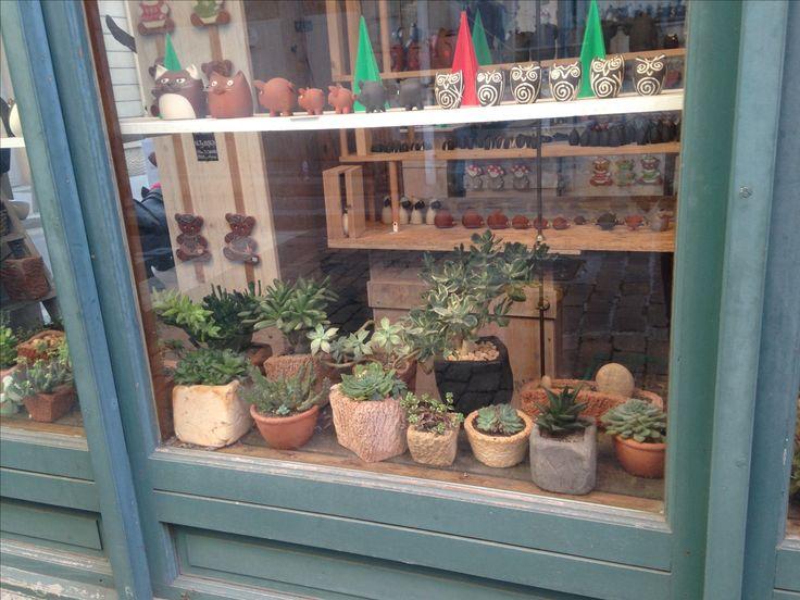 Une échoppe... des succulentes ! Vieux Lyon