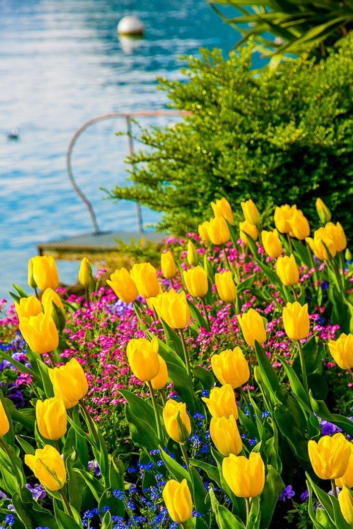 Die besten 25+ gelbe Tulpen Ideen auf Pinterest Tulpen Blumen - holzdeko im garten