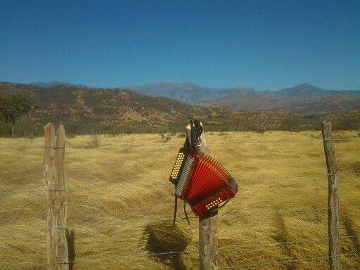 """Este pedazo de acordeón hay donde tengo el alma mía....""""Alejo Duran"""" Valledupar Colombia"""