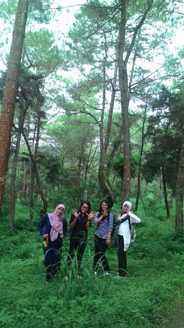 Jalan2 @hutan pinus with lovable friends ^ 3^