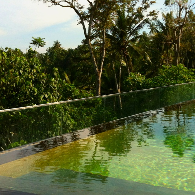 Infinity Pool, overlooking the lush green hills of Ubud.. Kamandalu Resort and Spa, Ubud, Bali