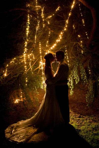 Beautiful enchanted fairy lights