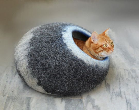 New Wooppers Cat beds. Cat cave Giveaway now on! Log on fb / wooppers
