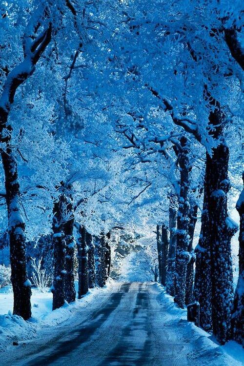 Se acerca el invierno, paisajes gélidos pero hermosos que reflejan el poder del azul en todo su esplendor! #Thepowerofblue is everywhere :)