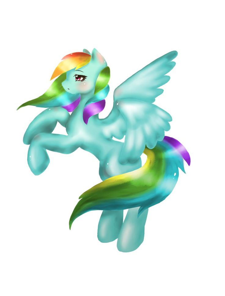 Rainbow Dash by Mizu-witch
