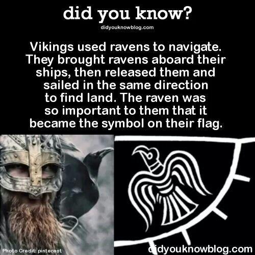 Ravens on the Viking flag                                                                                                                                                                                 More