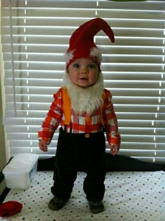 163 best halloween images on pinterest costume ideas holidays gnome costume solutioingenieria Images