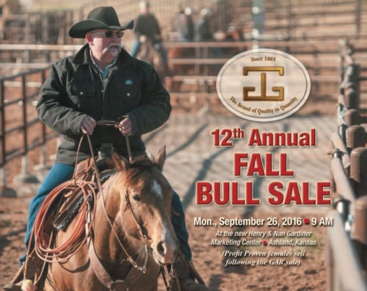 Gardiner Angus Ranch 12th Annual Fall Bull Sale | Rede de gado
