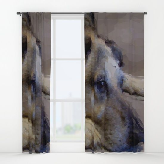 Old Friend Curtains by Terrella.  My old friend, Kelly, a German Shepherd x Dingo. I'm not sure if she was resting or daydreaming. She just looked cute!