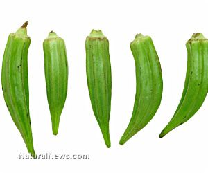 HEALTH BENEFITS OF OKRA. This vegetable is packed with fiber, which is good for cholesterol management. It has also been found to contain folic acid and vitamin B6 with amounts equivalent to 1/10 of the recommended daily intake for Americans.