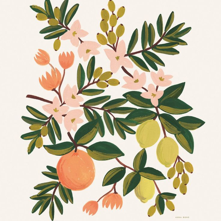 Citrus Floral 8x10 Art Print
