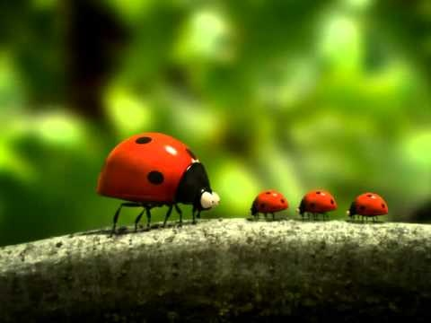 Minuscule - La vie privee des insectes (Volume 1)_part 6