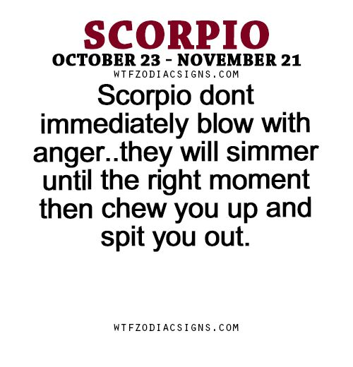 Scorpio dont immediately blow with anger..they will simmer until the right moment then chew you up and spit you out. - WTF Zodiac Signs Daily Horoscope!
