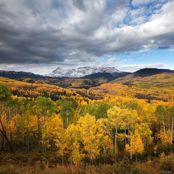Fall Creek Aspens in the San Juan Mtns. Colorado by Jack ...
