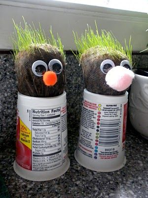 Homemade Chia pet using grass seed and dirt inside the toe end of a panty hose. tie a knot and put the end down in a yogurt container with water to wick the water to the soil.