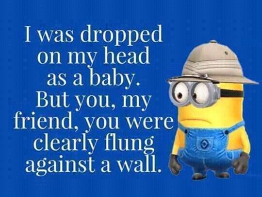 I was dropped on my head as a baby.  But you, my friend, you were clearly flung against a wall. - minion