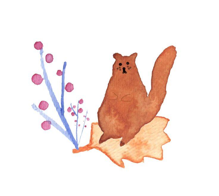Jelena Matriszenka #watercolor #watercolorillustration #illustration #watercolorart #art #akwarele #creature #cute  #animal #artforkids #illustrationforkids #kids #floral #nature #squirrel #flowers #forest