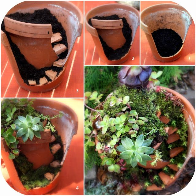 Fairy garden in a broken pot with succulents.
